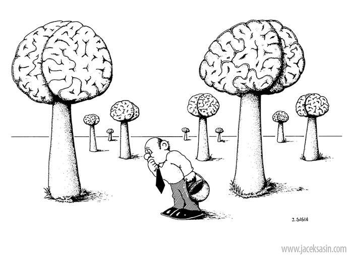 Mozg poszukiwany_rys SASIN